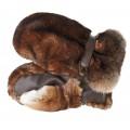 Dámské kožené rukavice P05 MASSA